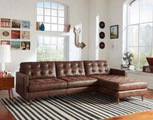 Update your Chattanooga living room furniture style with a timeless leather sofa from Omnia.